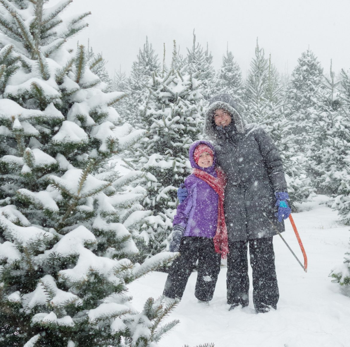 Mother Daughter Portrait at the Christmas Tree Farm in Heavy Fal